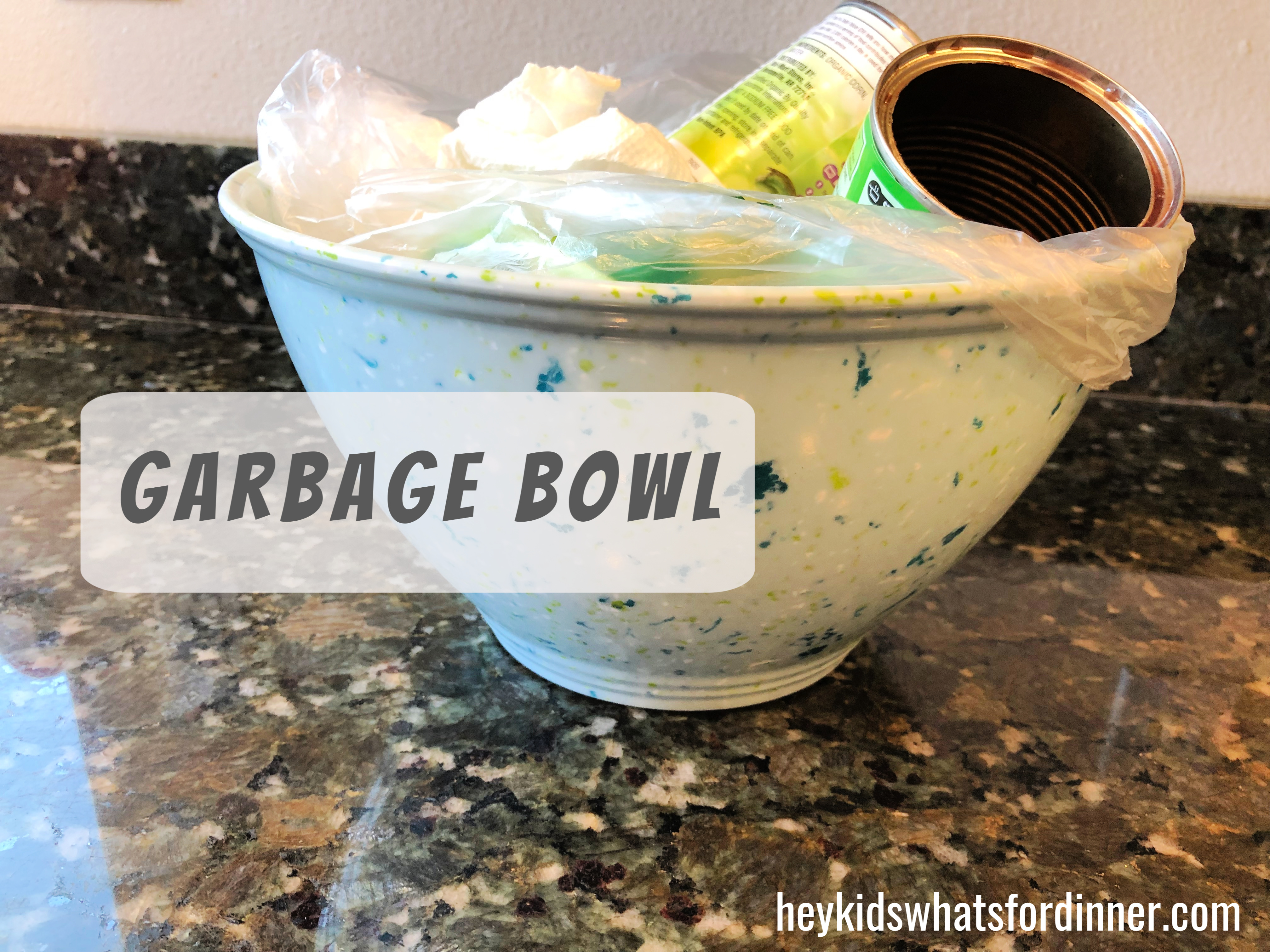 Garbage bowl.jpg